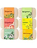 Face Rash Not Itchy - O Naturals 6 Piece Citrus Vitamin C & E Bar Soap Collection, Made with Organic Coconut & Olive Oil. Vegan, Triple Milled, Fresh Citrus Scents. Face, Hand & Body Wash. Gift Set. For Women & Men. 4 oz.