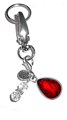 (Birthstone Charm Key Chain Ring, Women's Purse or Necklace Charm, Comes in a Gift Box! (July))