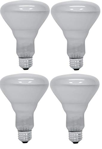 (GE 69126 Frost Soft White 65 Watt R30 Floodlight 4/Pack)