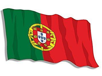 GHaynes Distributing MAGNET PORTUGAL Waving Flag Shaped Magnet(lisbon portuguese) 3 x 5 inch