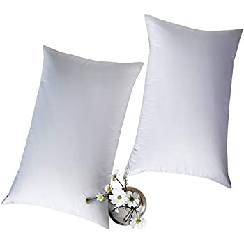 Amazon Com Globon White Goose Feather Bed Pillows Twin