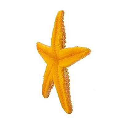 Safari Ltd Wild Safari Sea Life Starfish: Toys & Games