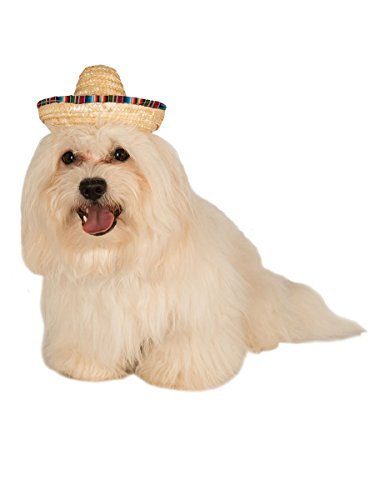 Rubie's Pet Sombrero Hat with Multicolor Trim, Small/Medium -