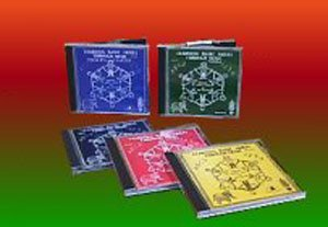 Learning Basic Skills Set: 5 CDs by Hap Palmer