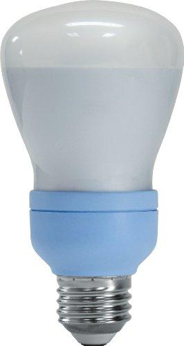 GE Lighting 61354 Reveal CFL 11-Watt (40-watt replacement) 340-Lumen R20 Floodlight Bulb with Medium Base, (11w R20 Compact)