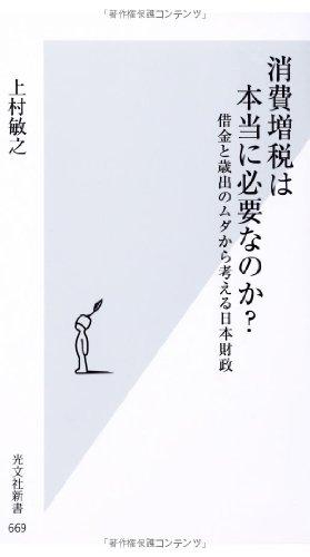 消費増税は本当に必要なのか? 借金と歳出のムダから考える日本財政 (光文社新書)