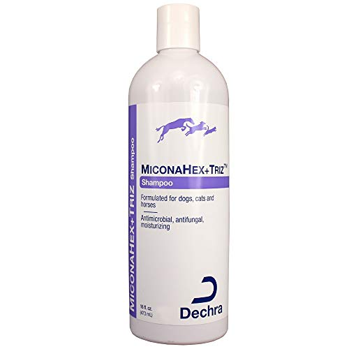 Dechra MiconaHex Triz Shampoo for Cats and Dogs 16 oz