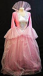 Ladies Fairy Tale Princess Womens Fancy Dress Costume Panto One Size AC985