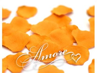 4000 Wedding Silk Rose Petals Burnt Orange