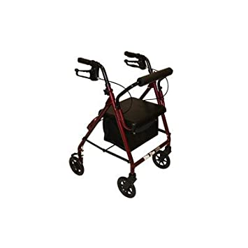Amazon.com: z600j Junior – Andador con asiento acolchado ...