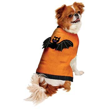 Petco Bootique Halloween Light up Bat Sweater Size Small 11-13 in - Petco Halloween Costumes