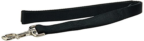Coastal Pet Products DCP904HBLK Nylon Loops Double Handle Dog Leash, 1-Inch by 4-Feet, Black ()