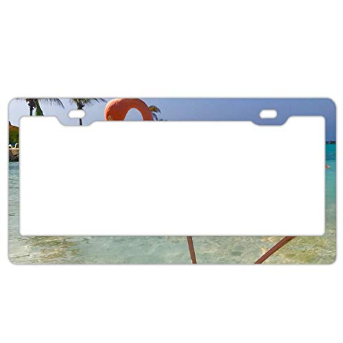 - YEX Abstract Flamingos in sea9 License Plate Frame Car License Plate Covers Auto Tag Holder 6