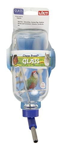 LIXIT Chew Proof Glass Water Bottle 16oz - Lixit Guinea Pig