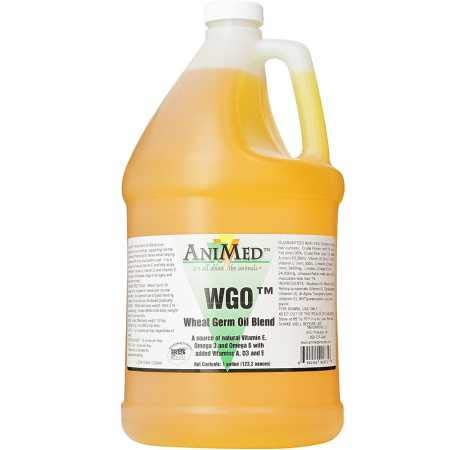 AniMed WGO Wheat Germ Oil Blend For Horses and Dogs (1 Gallon Bottle) by AniMed