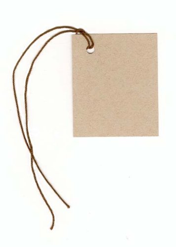 100 Blank Kraft Hang Tags 1 3 4 Quot X2 1 8 Quot Amp 100 Brown Cut