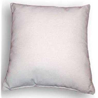 Euro 26  X 26  Pillow Insert
