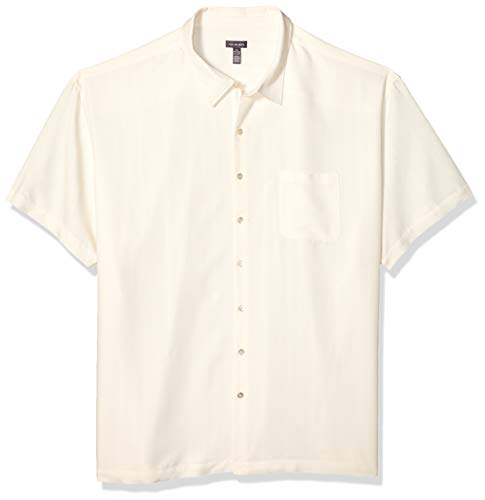 Mens Classic Shirt Stripe (Van Heusen Men's Size Big and Tall Air Short Sleeve Button Down Poly Rayon Stripe Shirt, Cream Egret, X-Large)
