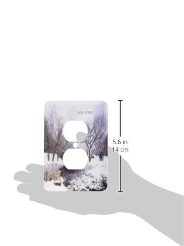 3dRose lsp/_62098/_6 Winter In Central Park 2 Plug Outlet Cover