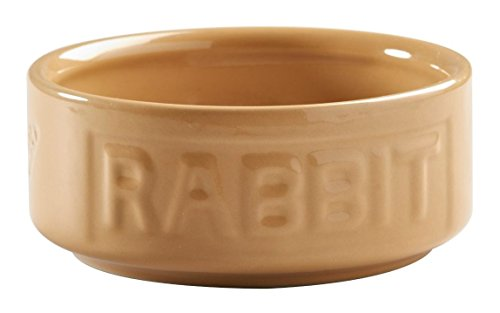 (Mason Cash Cane 5-inch Lightred Rabbit Bowl)