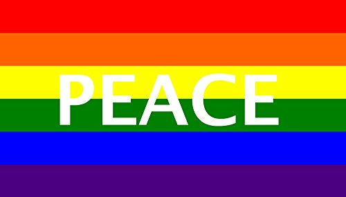 SSK Rainbow Peace Outdoor Flag - Large 3' x 5', Weather-Resistant Polyester (Rainbow Flags Wholesale)