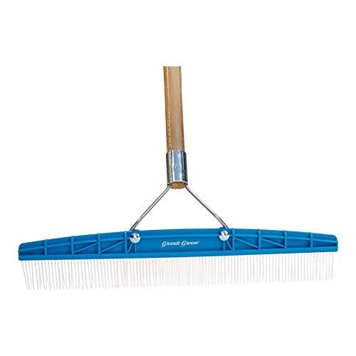 Grandi Groom AB24 Carpet Rake, 18-Inch Head, 54-Inch Handle, Blue