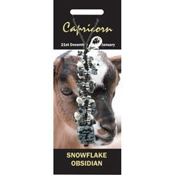 Price comparison product image Capricorn Birthstone Crystal Charm - Snowflake Obsidian