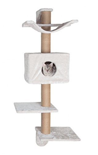 (Trixie Pet Products Dayna Scratching Post, Gray)