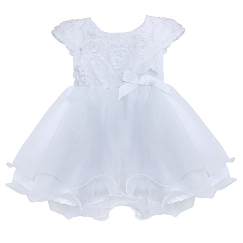 (TiaoBug Baby Girls 3D Rose Flower Princess Wedding Party Christening Baptism Dress White 3-6 Months)