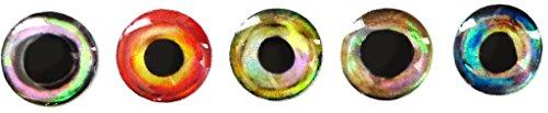 Brule 3-D Hard Epoxy Eyes (Combo1, 5mm)
