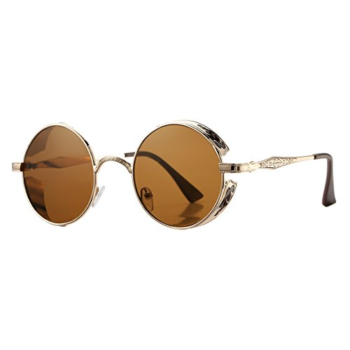COASION Retro Steampunk Gothic Sunglasses for Men Women Small Round Circle Mirror Lens Metal Frame (Rose Gold Frame/Brown Lens, - Sunglasses Little Round