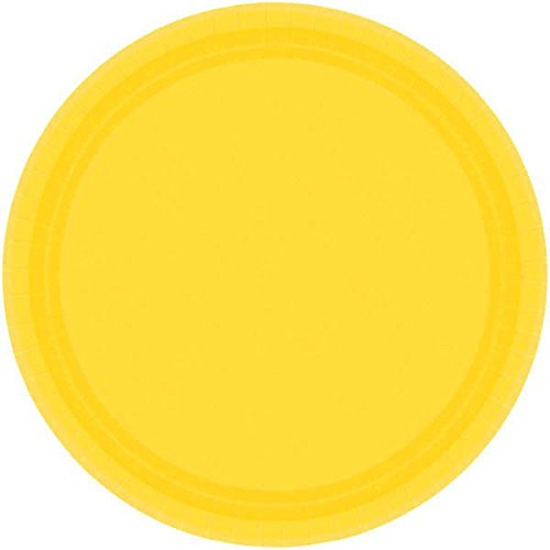 (Amscan 69915.09 Disposable Round Dinner Paper Plates Tablewear Party Supplies, 10.5