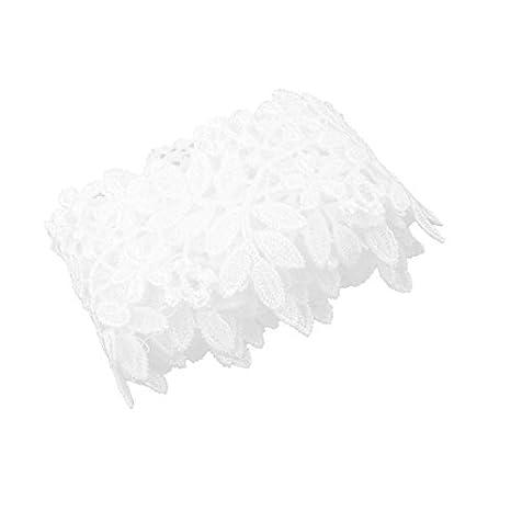 Amazon.com: eDealMax poliéster ropa de Vestir Falda bordada arte de DIY de la decoración del borde del cordón de ajuste 2.2 yardas Blanca