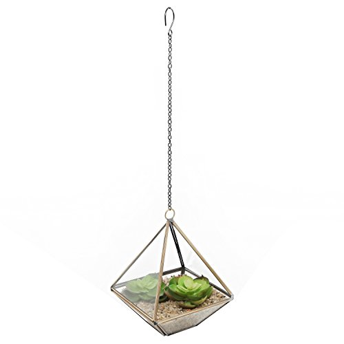 Clear Glass & Brass Tone Metal Faceted Hanging Air Plant Terrarium/Tea Light Candle Holder - MyGift