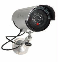 Dummy Camera in Circular Outdoor Housing w/ Light