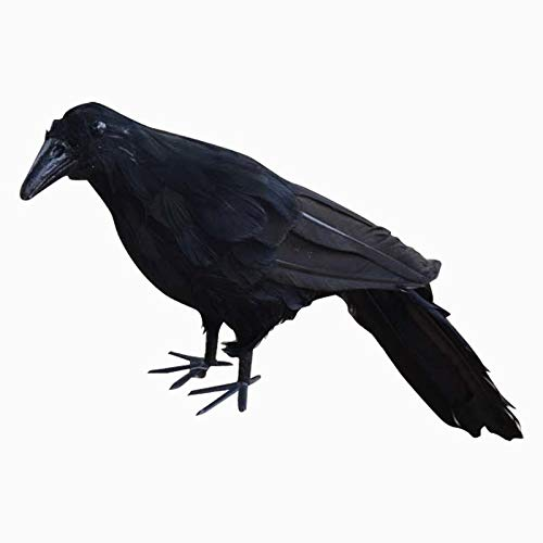Party DIY Decorations - Realistic Black Raven Feathered