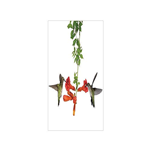 (3D Decorative Film Privacy Window Film No Glue,Hummingbirds Decor,Two Hummingbirds Sip Nectar from a Trumpet Vine Blossoms Summertime,for Home&Office)