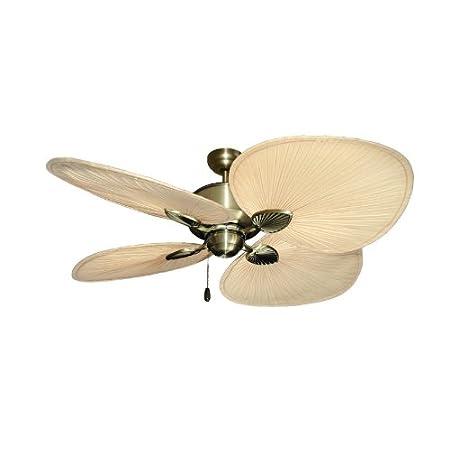 31oW%2B4wytDL._SS450_ Best Palm Leaf Ceiling Fans