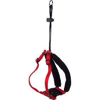 Petco Red Non-Pull Mesh Dog Harness, Medium
