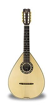 mda312  APC MDA312 Mandolin (Case included): Amazon.: Musical Instruments