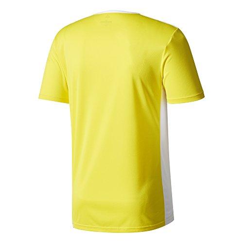 Yellow Entrada Adidas 18 Uomo shirt T white ZAvA1R