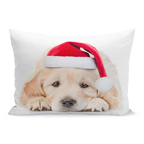 Semtomn Throw Pillow Covers Dog Sad Golden Retriever Puppy in Red Christmas Santa Hat Lying Front View Holiday Pillow Case Cushion Cover Lumbar Pillowcase for Couch Sofa 20 x 36 inchs