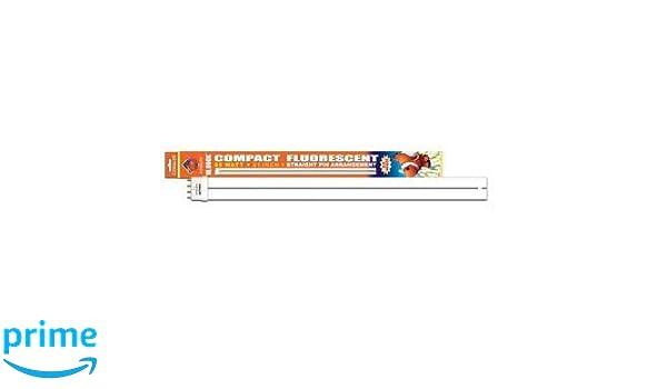 Amazon Esu Bulb Pc 10k Stp 21in 65w Compact Fluorescent Bulbs Pet Supplies