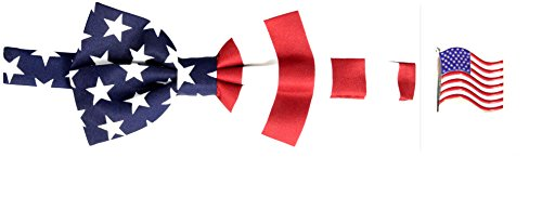 American Flag Bow Tie & American Flag Lapel Pin Set - Exclusive Silk Bow Tie