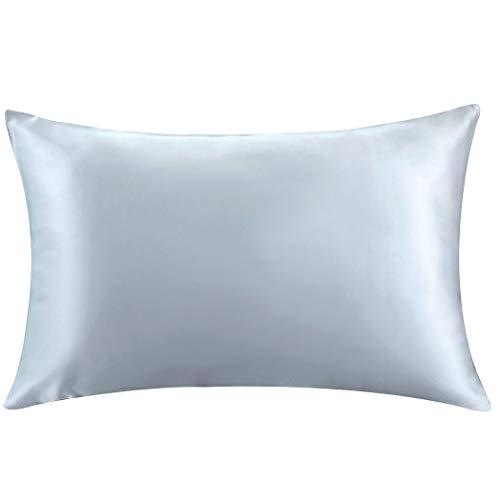 ZIMASILK 100% Mulberry Silk Pillowcase for Hair and Skin,with Hidden Zipper,Both Side 19 Momme Silk, 1pc (Queen 20