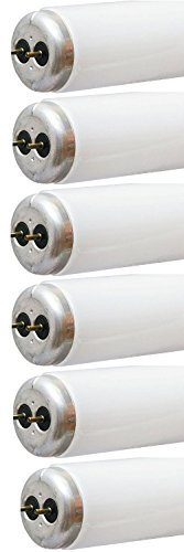 GE Lighting 80085 30-Watt T12 3-Feet(36-Inch) Ecolux Fluorescent lamp, Cool White, 6-Pack