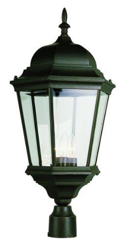 Trans Globe Lighting 51001 BK product image