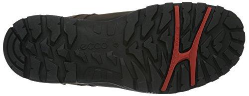 Randonne Brun Hommes Pour De Ecco coffee02072 Xpedition Iii Chaussures Basses Tx05wR80q