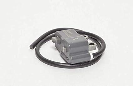Echo OEM - Soplador de bobina de encendido a411001620 ...