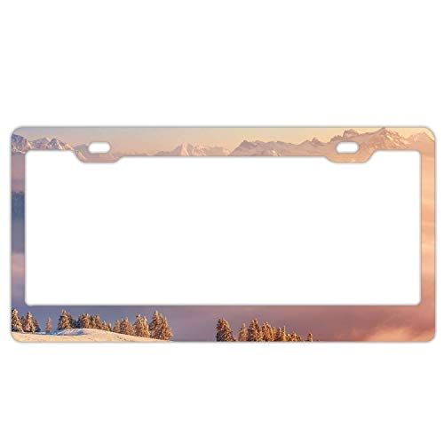 YEX Abstract Alps Switzerland Mountains Clouds pines2 License Plate Frame Car License Plate Covers Auto Tag Holder 6